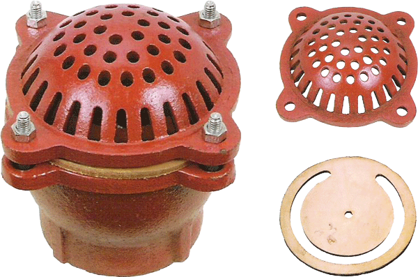 Cast Iron Foot Valve with Strainer